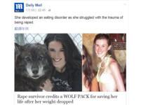 每天相處八小時 性侵受害者與「狼」為友戰勝厭食症