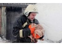 差點變「150隻烤豬」 俄羅斯消防員冒火救豬仔