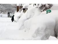 日本大雪持續增強 積雪淹沒公車站牌、樹林銀白一片