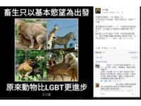 反同專頁五叉貓:想當畜就徹底一點 動物都比LGBT進步