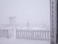 冷氣團發威!玉山也飄下入冬第二場雪 積雪已有1公分