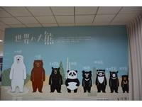 花蓮隱藏版新景點!超多娃娃的「東部台灣黑熊教育館」