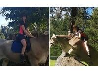 爸媽說馬兒太貴家裡養不起 澳洲少女變身「騎牛師」