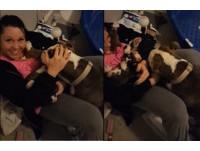 比特犬叼寶寶塞滿中途媽媽懷裡 網友暖哭:牠覺得安全