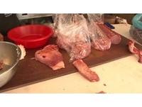高雄市場攤販大放空...流浪貓跳上台 啃完豬肉賣你吃