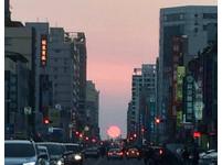 「粉紅太陽」落日超美! 高雄青年路1年2次「懸日」