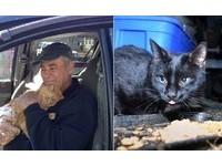 每天奔16個點!7旬窮翁「撿破爛換飼料」 餵流浪貓一餵22年