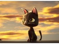 瘋電影/黑貓魯道夫 讓貓告訴你知識就是力量