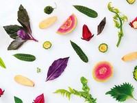 康健雜誌/豬肝、青花菜、山苦瓜…你沒想過的抗老食物