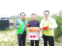 青年農民薛田宗 賣牛番茄捐錢助學