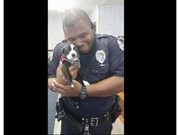粗獷警察懷抱小狗表情超幸福 辦案竟多了「新家人」