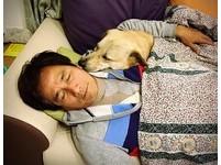 爸想買純種狗!女兒撿浪浪他氣瘋 結果寵成兒子「抱著睡」