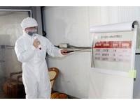 冬令進補禽肉蛋類充分煮熟 銀髮族防範H5N6禽流感
