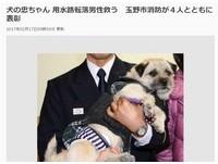 發現落水老翁急呼主人求救 日犬忠太郎獲消防隊表揚