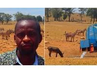 動物全渴死!農夫掏腰包「租車運水」 天天奔波數小時救命