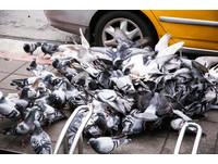 台人死亡第一例!「染H7N9台商」多重器官衰竭不治