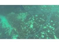 綠島海底驚見「黑色巨蟒」汙染 民轟:大船偷排重油!