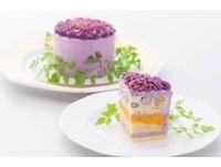 從未有過的味道體驗!日本最新風潮「生菜做的沙拉蛋糕」