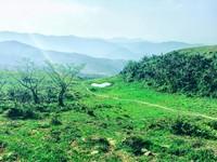 譜出草原交響曲!「桃源谷大草原」彷彿置身瑞士山谷