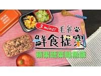 狗狗也要吃點海味! 自煮「蘋果蔬菜鮭魚飯」美味又健康