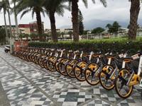 無固定地點租還!花蓮公共自行車oBike上路5/14前免費