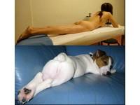 美魔女全裸照獻粉絲 讓部落客想到…「狗界丁國琳」