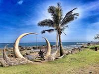 全台最美「鞦韆」在花蓮 阿美族三姐弟打造的海邊天堂
