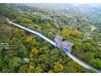 全台最高天空自行車道 騎車眺望平原、滿山桐花雪美景