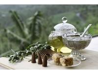 嘉義太平雲梯沿線之旅 DIY香草線香、嚐遍山中野菜美味