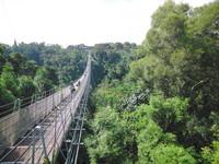 串連猴探井、龍鳳瀑布美景 南投28公里天空自行車道