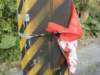 競選旗幟遭焚 陳以真呼籲選民展現民主素養