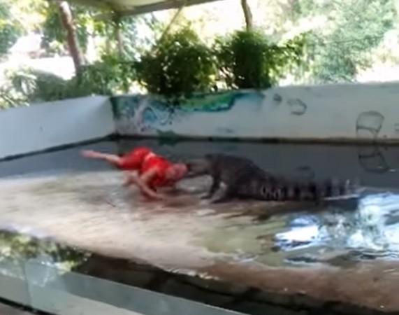 ▲泰國蘇梅島鱷魚咬住表演員頭部狂甩。(圖/翻攝自ViralHog YouTube)