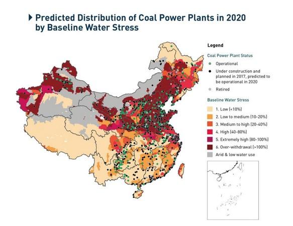 ▲▼綠色和平敬把台灣列為中國一部分。(圖/翻攝自綠色和平官網)