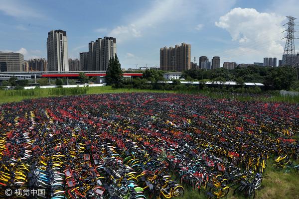 ▲共享單車,bike。(圖/視覺中國)