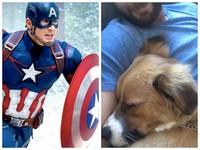 大烏龍!美國隊長留言想念愛犬 網友竟誤以為牠離開了