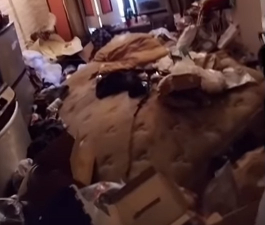 ▲▼美國曼哈頓建築管理員費南德茲(Martin Fernandez)在整理公寓某間住家時,發現屋內有蟑螂、死貓。(圖/翻攝自YouTube/Martin Fernandez)