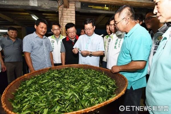 ▲鄭文燦參訪百年老茶廠-福源茶廠。(圖/桃園市政府提供)
