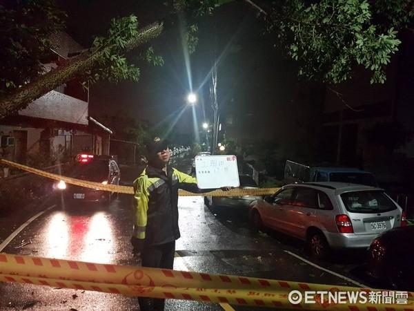 ▲中颱尼莎強風暴雨,新北市樹林路樹壓倒電桿,警消正設法排除中。(圖/記者陳豐德翻攝)