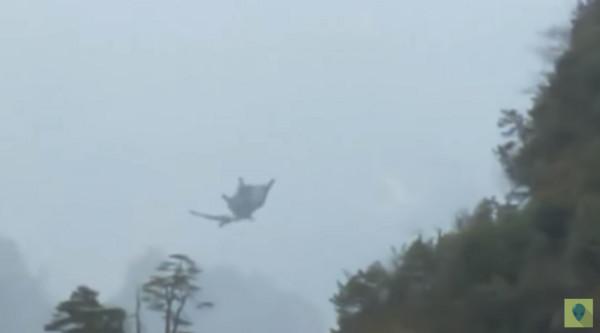 大陸石山群中發現類似飛天龍的神祕生物。(圖/翻攝自Alien Planet YouTube)