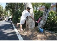 看見「樹精靈」 只要用友善看顧大地與自然的心