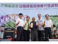 大園區甘藷比賽 蕭富雄種的5斤1兩甘藷榮獲「甘藷王」