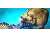 《天狼星》紀錄片 要曝光阿塔卡馬沙漠「迷你外星人」