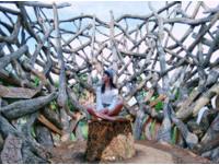 文青妹小旅行!桃園近期人氣景點 賞花海、漂流木藝術