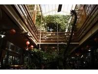 台中森林餐廳內有寵物「店鴨」 木棧道、景觀台眺望台中美景