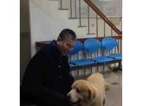 警察幫狗打手槍 裁定「看不出狗不舒服」免罰