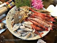 平價台北南港海鮮鍋 超人氣「痛風海膽鍋」