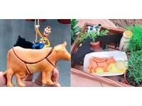 自己的牛牛自己組裝!台南拼圖概念雞蛋糕店名就叫路邊攤