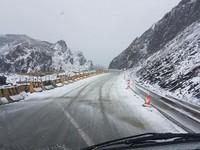 路面積雪1公分!合歡山下雪了 鋪天蓋地銀白世界超夢幻