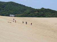 台灣也有大漠風情! 三大沙丘景點全攻略