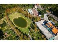 新竹關西新開幕景觀餐廳 浪漫愛心池塘畔賞落羽松!